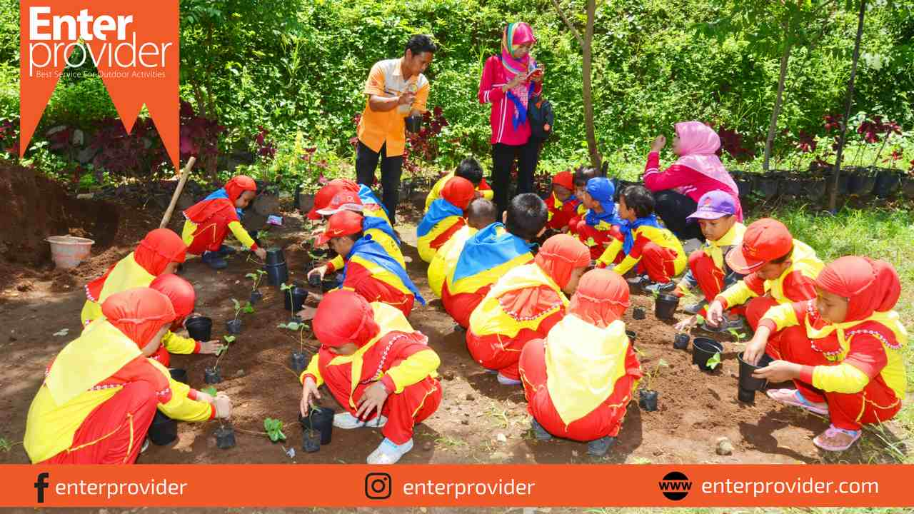 pacet-mini-park-enter-provider-outbound-pacet-20