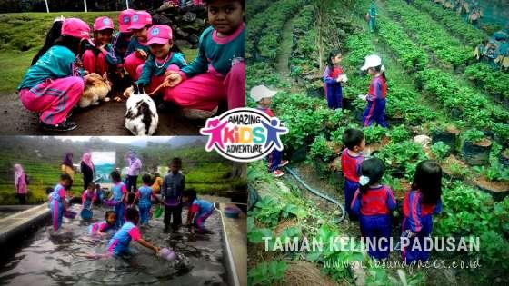 Outbound Anak TK di Pacet Mojokerto