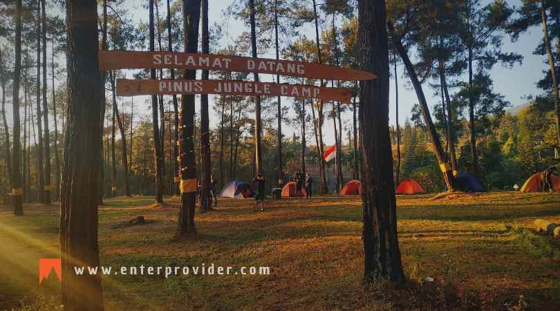 Pinus Jungle Camp Trawas, Tempat Outbound & Camping di Trawas