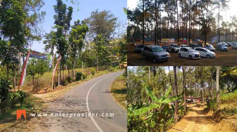Pinus Jungle Camp Trawas